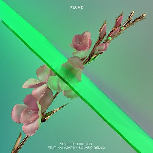 Flume альбом Never Be Like You (Martin Solveig Remix)