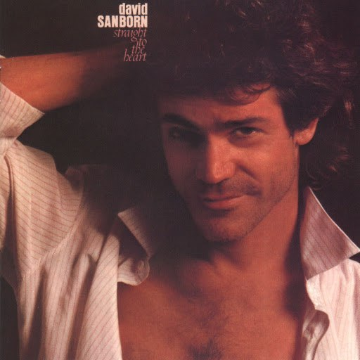 David Sanborn альбом Straight To The Heart