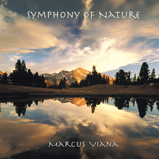 Marcus Viana альбом Symphony of Nature