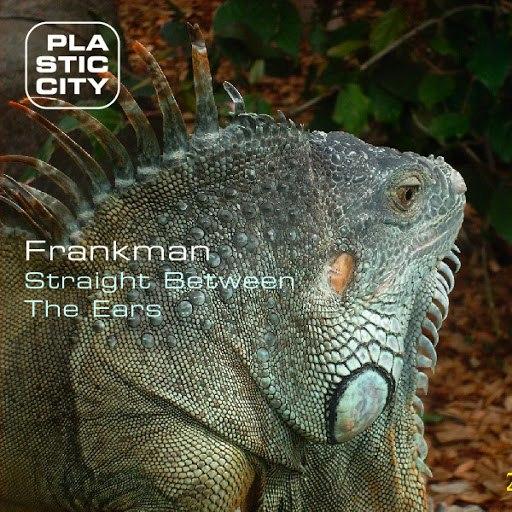 Frankman альбом Straight Between The Ears