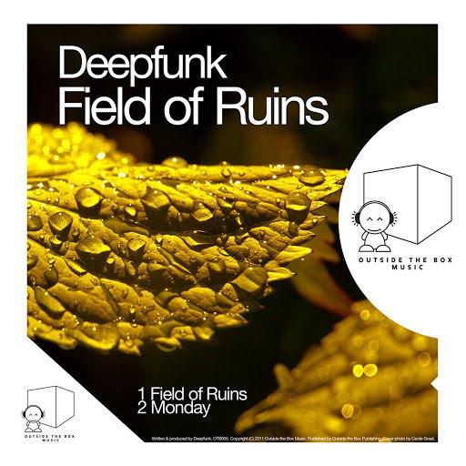 Deepfunk альбом Field of Ruins