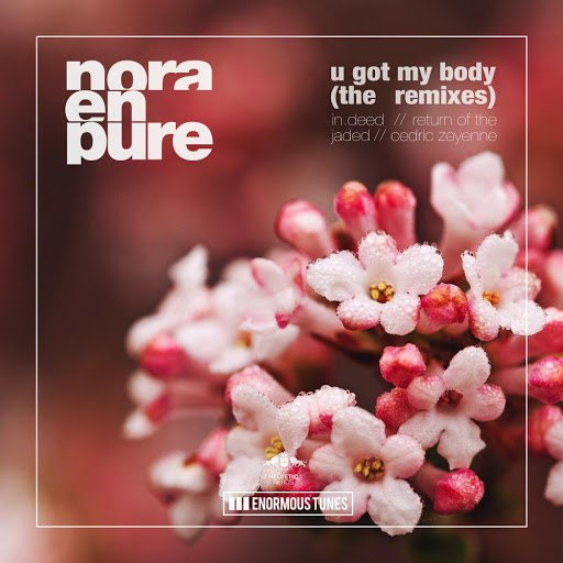 Nora En Pure альбом U Got My Body - The Remixes