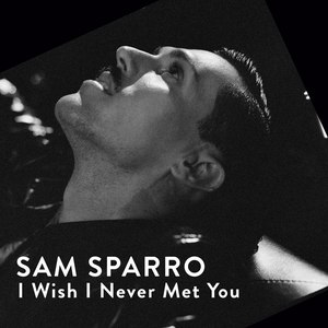 Sam Sparro альбом I Wish I Never Met You