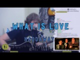 Haddaway - What Is Love. Kirya Live.