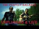 The Perfect Balance - Mr Joker live acoustic version