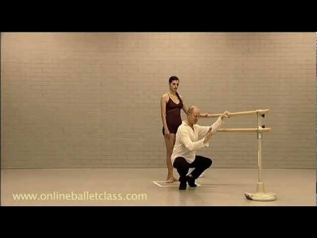 Ballet Lesson Plie