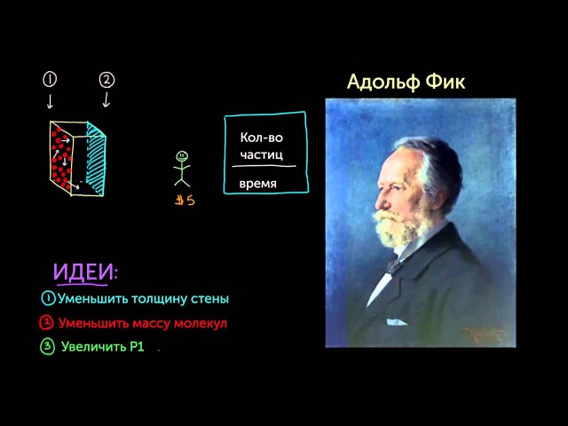4. Закон диффузии Фика