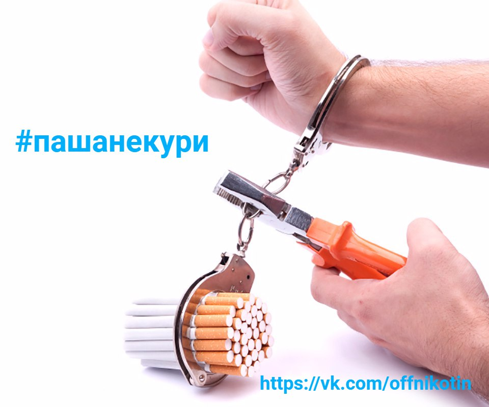 https://pp.vk.me/c836129/v836129475/42d/yplYc_ugLog.jpg