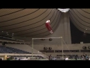 Самые сложные и зрелищные элементы в спортивной гимнастике