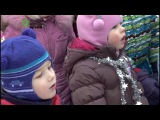 В Вологде начали украшать главную елку новогодней столицы Русского Севера