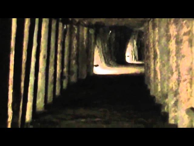 Странные существа, призраки снятые на видео часть 2. Demons, Angels, Aliens, Ghosts