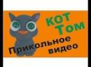 Игрушка говорящий кот Том с большими глазами Смешное видео Fanny video cat