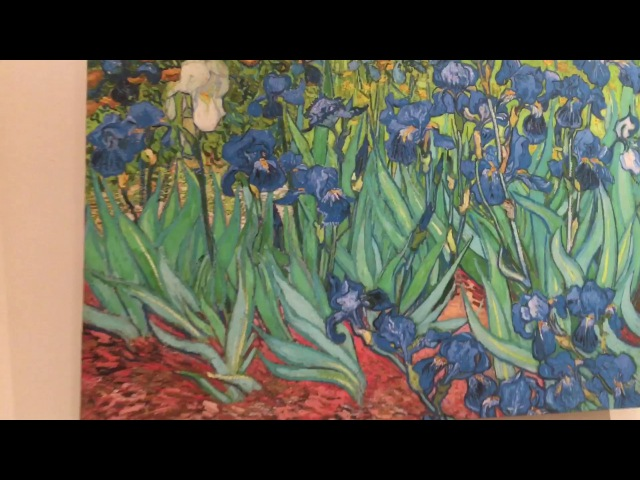 Exhibition Vincent's Van Gogh/ Выставка Винсента Ван Гога