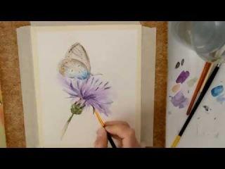 Бабочка. Картина акварелью.