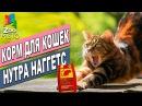 Корм для кошек Нутра Наггетс Хэабол | Обзор корма для котов | Nutra Nuggets Hairball review