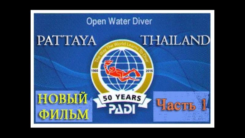 Новый фильм Курс PADI Open Water Diver Часть 1 на русском языке » Freewka.com - Смотреть онлайн в хорощем качестве