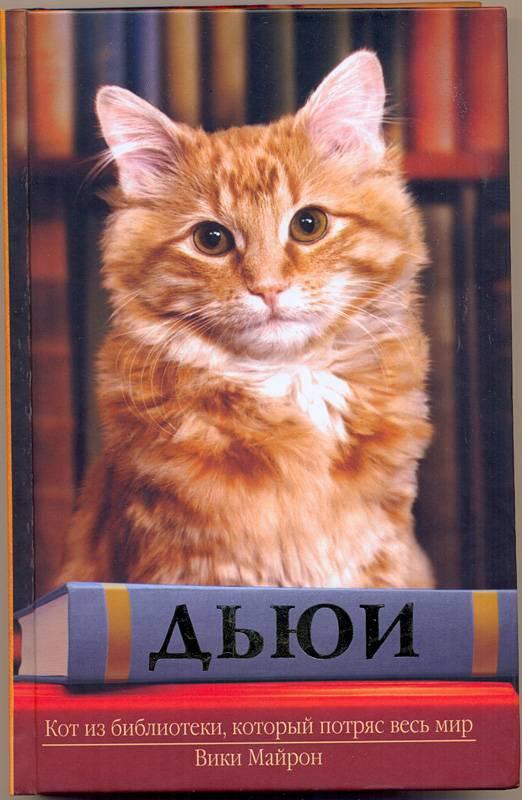 Что может сделать кот с котенком