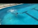 Прыжок рыбкой