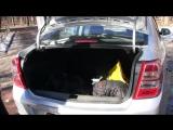 Лучший тест-драйв Шевроле Кобальт _ Sprint test Chevrolet Cobalt