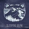 Sleeping Bear [post-rock / Kiev, UA]