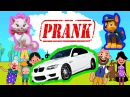 Пранк над ПАПОЙ Мультики для детей играем в игру Испортили машину Кошки против С...