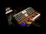 Demo Jam on the Moog Minimoog Voyager