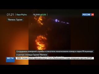 Новости на «Россия 24» • В центре Тбилиси горит лес