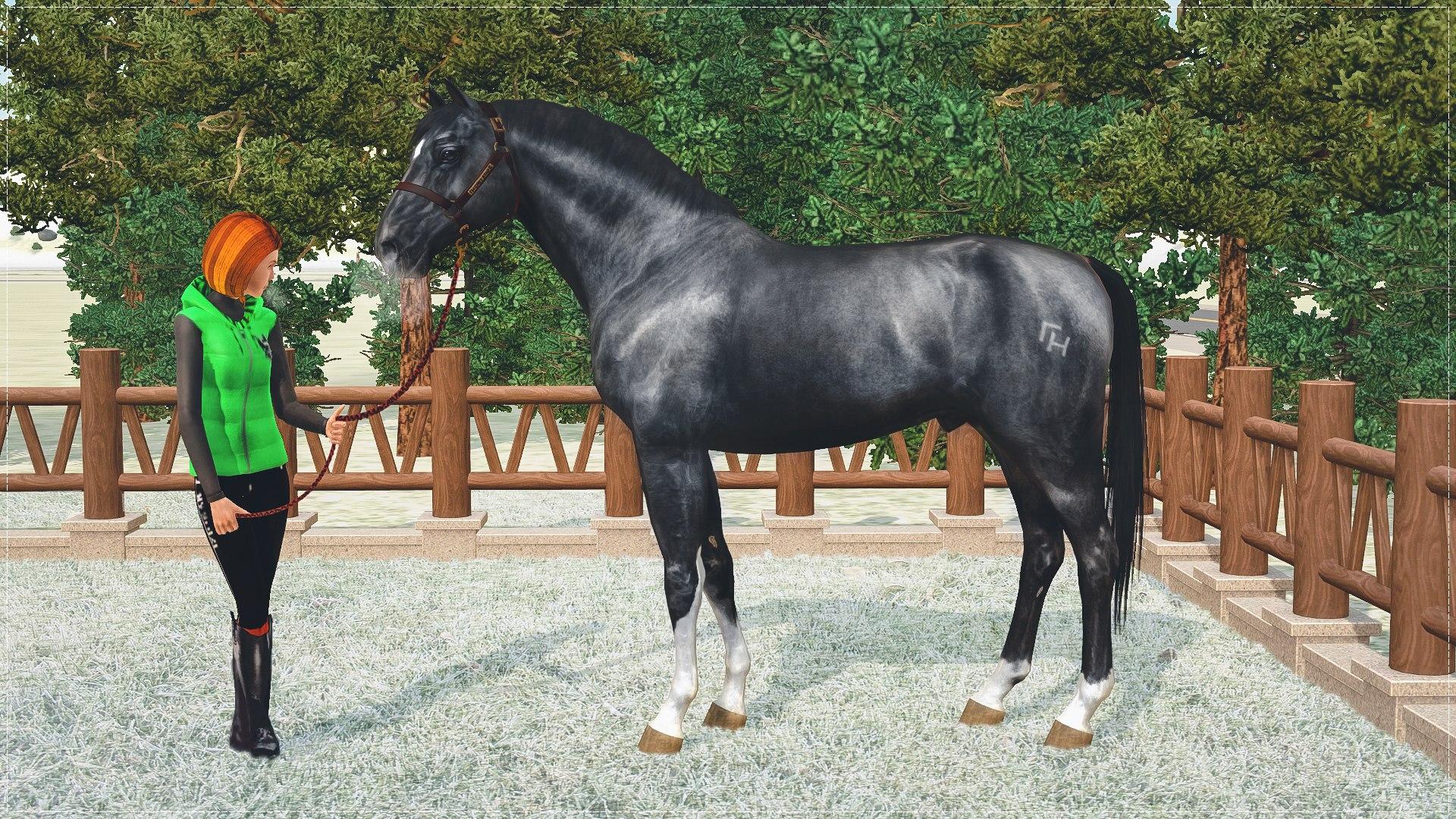 Регистрация лошадей в RHF 2 - Страница 5 YXJxhWDIiOo