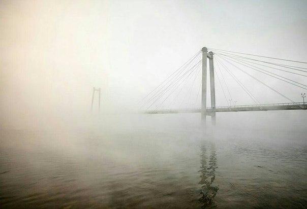Вантовый мост в тумане☁