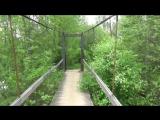 Подвесные мосты на реке Тихвинка. Остатки Смоленского шлюза. Водозабор