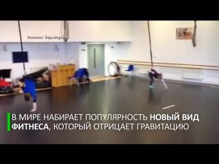 Назло гравитации: новый вид фитнеса позволяет ходить по стенам