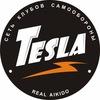Айкидо в Ростове-на-Дону. Tesla Real Aikido WCRA