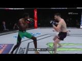 UFC Fight Night 102 : Рэнди Браун — Брайан Камоцци / Randy Brown vs. Brian Camozzi