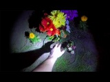 Planting a garden - Buttered side down Ep.4