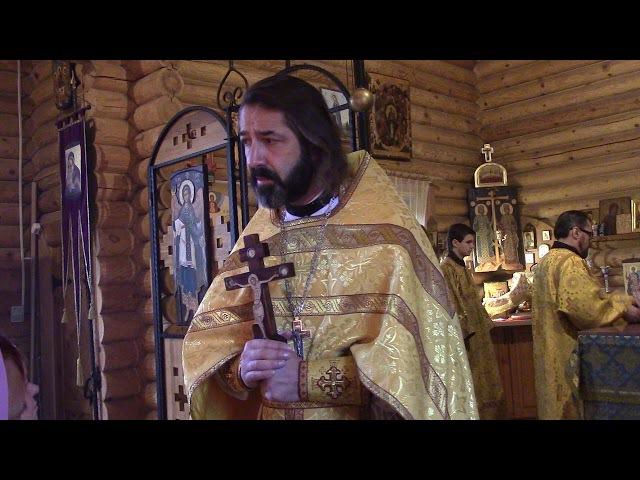 Проповедь протоиерея Михаила Бравермана на евангельский отрывок о наинской вдо...