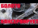 Нашли оружие и солдат в болоте прямо под Льдом Found weapons in the the swamp right under the ice