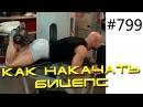 Бицепс бедра Упражнение для красивых бедер Сгибания ног лежа на животе в тренажере