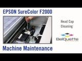 EPSON - Machine Maintenance  Head Cap Cleaning