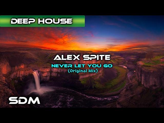 Alex Spite - Never Let You Go (Original Mix)