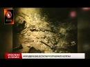 Зроблено в Україні. Як археолог знайшов Скіфську пектораль