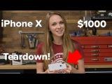 iPhone X | Разбор и анализ!