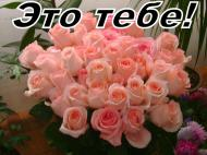 Цветы. Подруге!