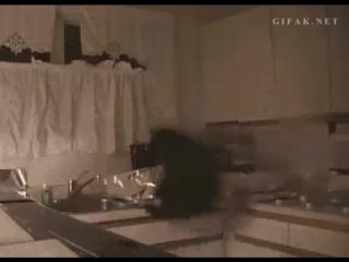 Не знаете как отучить кота от столов? Настелите фольги! ))