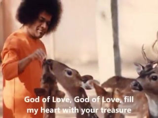 видео Sudhir  SAI BABA  GOD OF LOVE FILL MY HEART WITH YOUR TREASURE