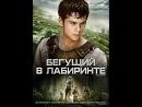 ТЕСТ 2 БЕГУЩИЙ В ЛАБИРИНТЕ 2014
