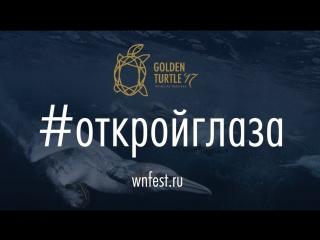 Фестиваль «Золотая Черепаха»: 14 октября — 19 ноября | Москва, Санкт-Петербург