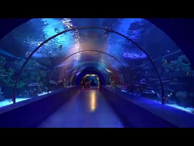 ANTALYA AQUARIUM / The world's biggest tunnel aquarium