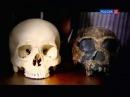 BBC Рождение человечества Битва за планету Земля Homo Erectus 1 серия