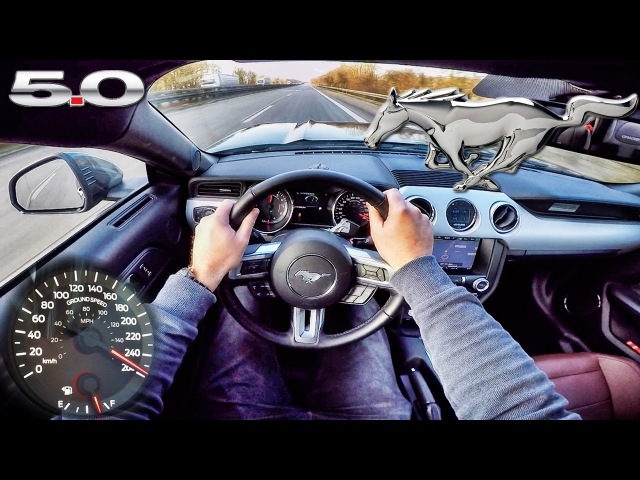 Ford Mustang GT 5.0 ACCELERATION TOP SPEED POV Autobahn Test Drive by AutoTopNL