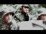 Западный фронт (1944  г.)